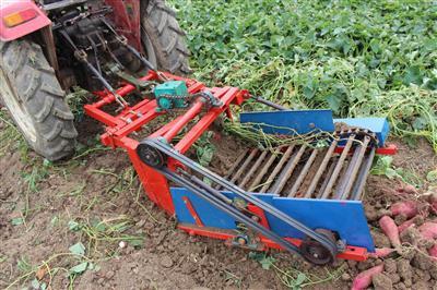 土豆红薯链杆式挖掘机